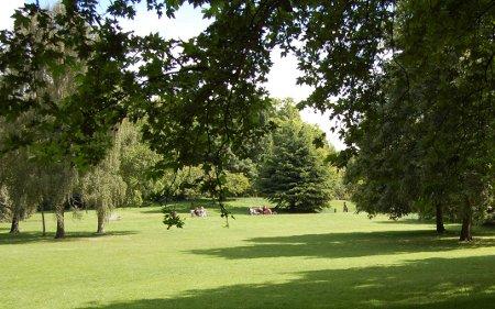 Todo verde en Hyde Park