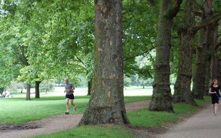 Gente corriendo por Green Park
