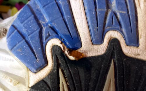 crista-zapatilla